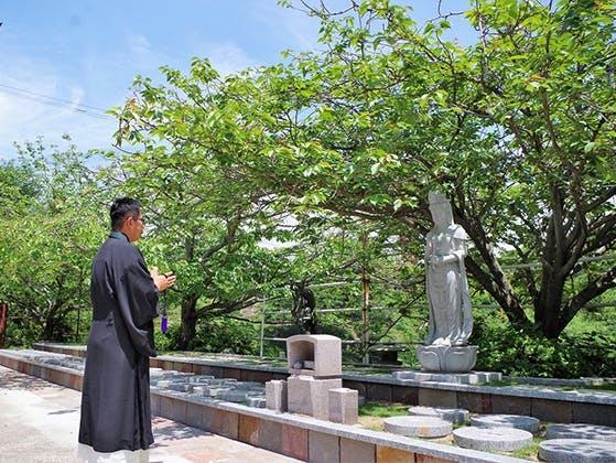 一心寺 樹木葬「夢さくら」