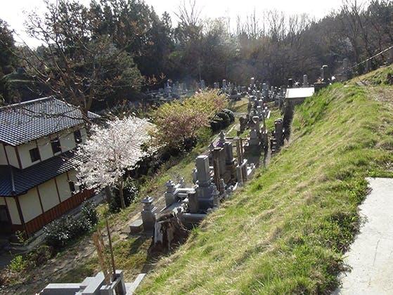 浄光寺「やすらぎ浄桜墓」 永代供養墓 樹木葬