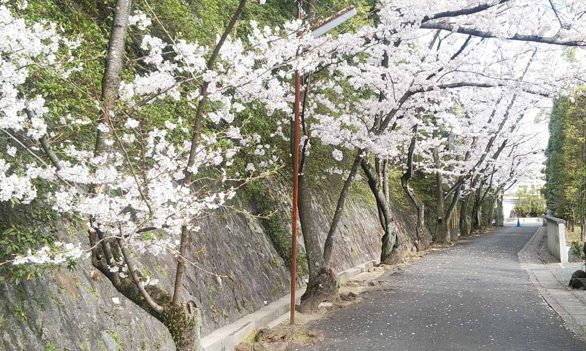 本覚寺墓苑