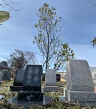 法雲寺 新百合ヶ丘墓苑 樹木葬の画像