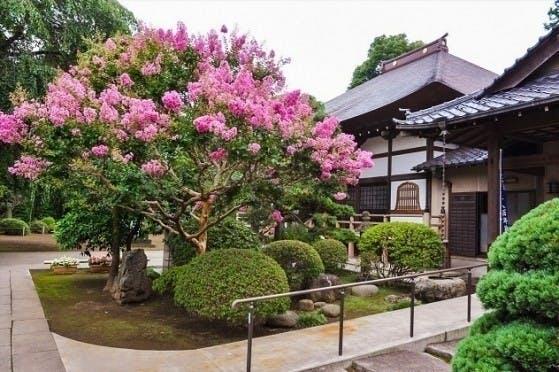 相頓寺墓苑 永代供養付 家族墓・夫婦墓