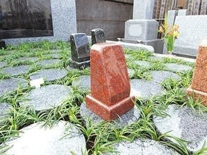 杉並 下高井戸駅近樹木葬「蛍」の画像