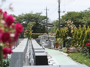 バラの里 おぎの聖地公園の画像