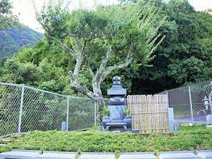 梅林廟 永代供養墓の画像