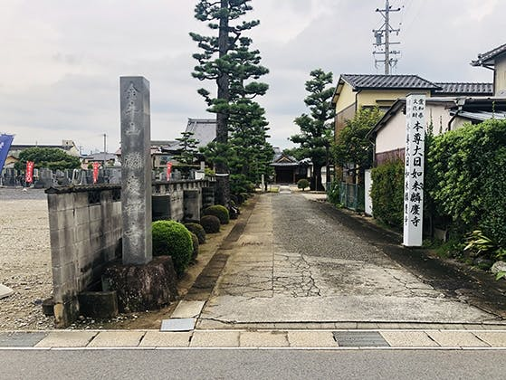 円通寺 のうこつぼ