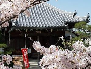 千福寺 永代供養納骨堂の画像