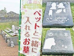 愛ふれあいガーデン奈良の画像