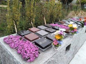 境の松墓園の画像