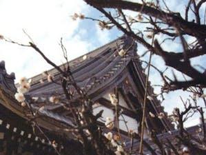 慶岸寺の画像