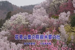 花見山奥の院樹木葬の画像