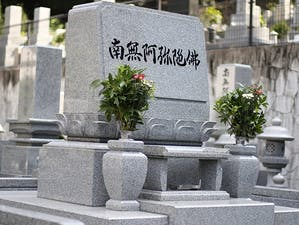 このがわ千年精舎 高龍山 善福寺の画像