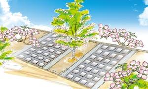美原霊園 ハナミズキ樹木葬 永代供養の画像