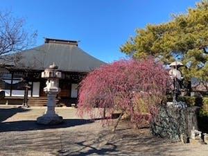 円通寺・一般墓の画像