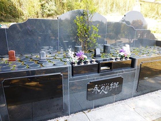 成田の杜公苑 樹木葬墓