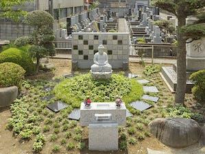 常然寺 樹木葬永代供養墓「紫苑」の画像