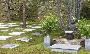 清蔵寺霊園(ペット共葬可能な樹木葬・永代供養墓)の画像