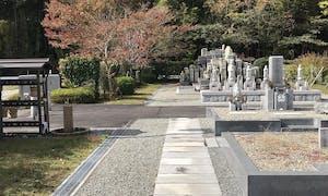 澤田霊苑の画像