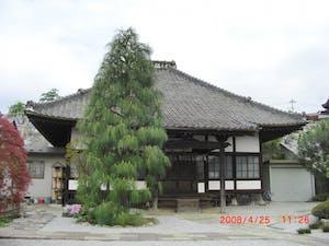 妙安寺の画像