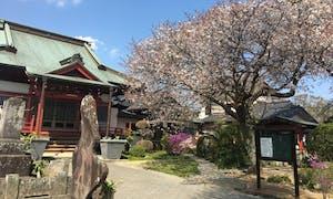 佐倉浄苑の画像