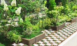 麻布 称名寺 樹木葬・庭苑墓の画像