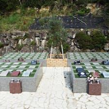 大舟寺 樹木葬の画像