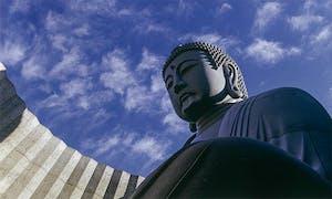 真駒内滝野霊園 頭大仏の画像