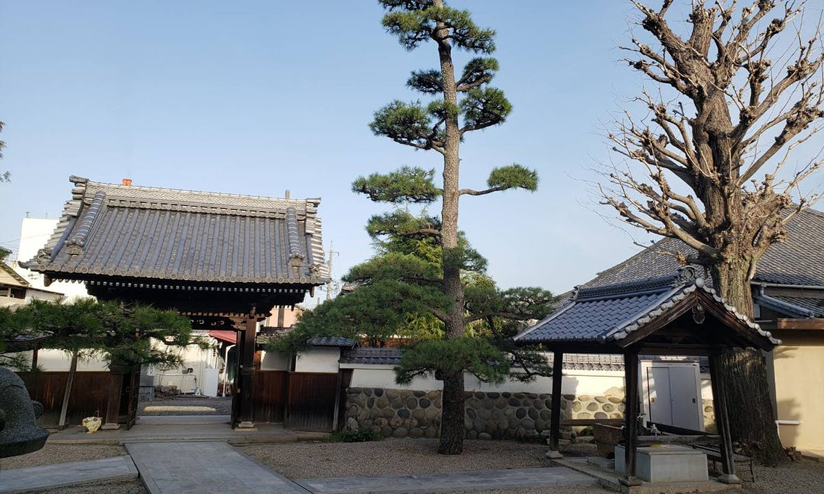 専福寺 のうこつぼ