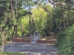 自然に還る樹木葬 「里の丘」の画像