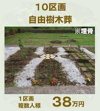 徳壽寺 橘樹木葬の画像