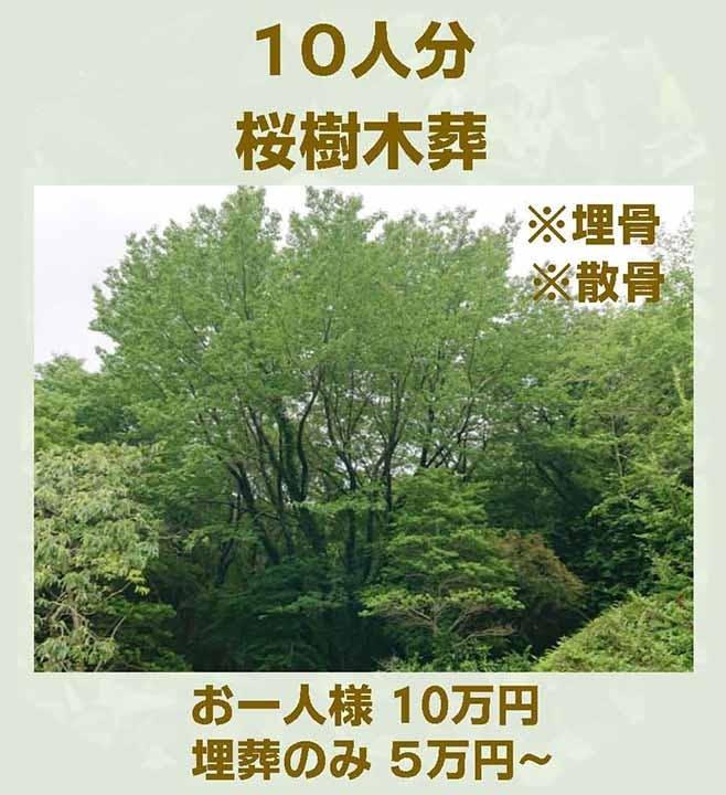 徳壽寺 橘樹木葬