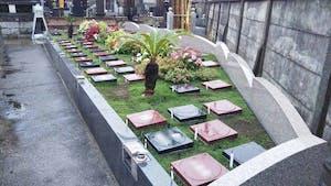 プレミアム茅ヶ崎湘南の空樹木葬墓地の画像