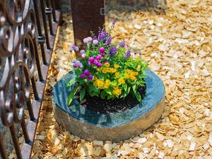 メモリアルガーデン天寧寺霊苑の画像