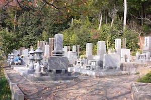 妙福寺墓地の画像