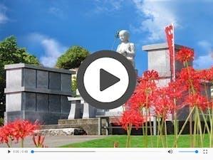 宝興寺 樹木葬・永代供養墓の画像